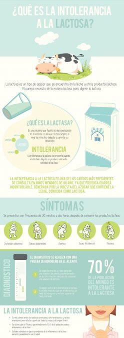 Infografia - Que es la Intolerancia a la lactosa