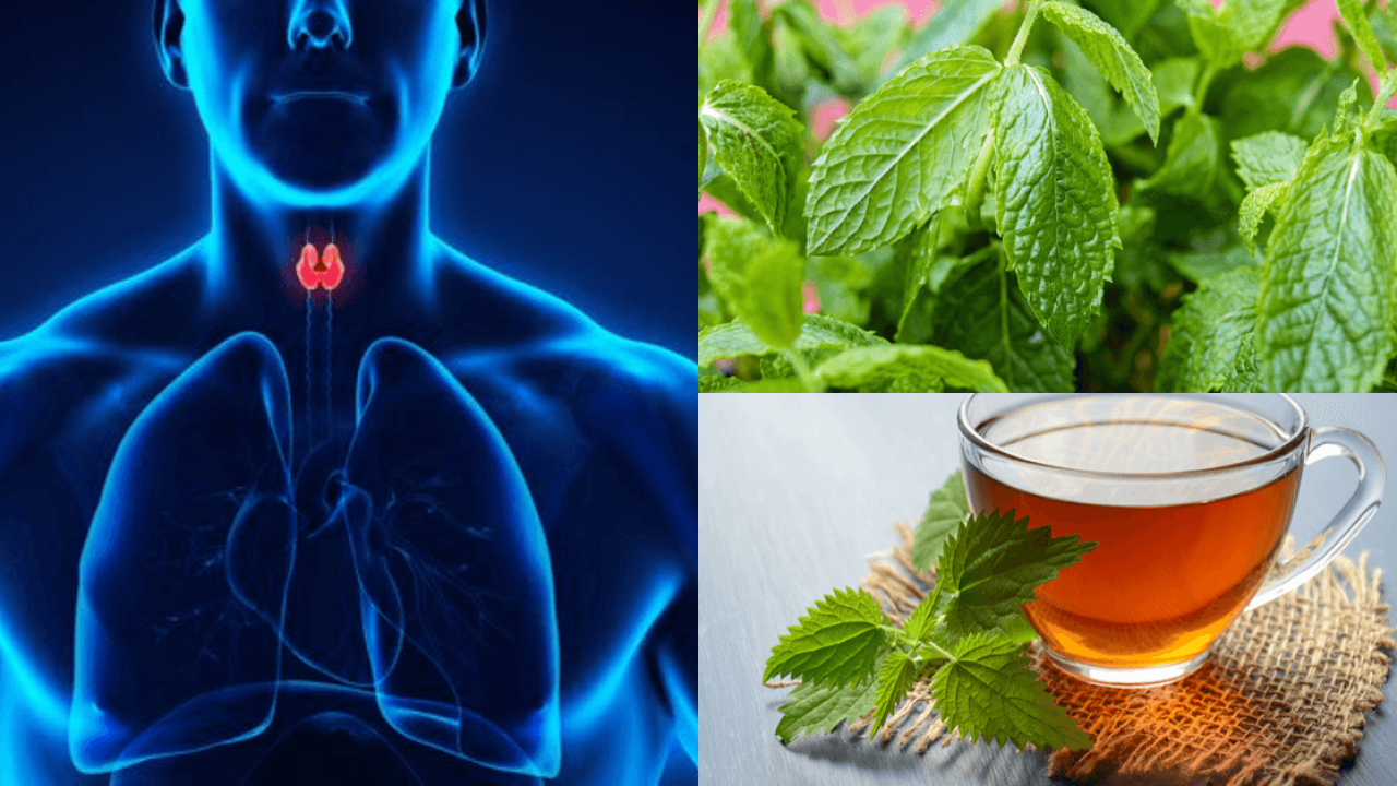 un remedio natural para el hipotiroidismo