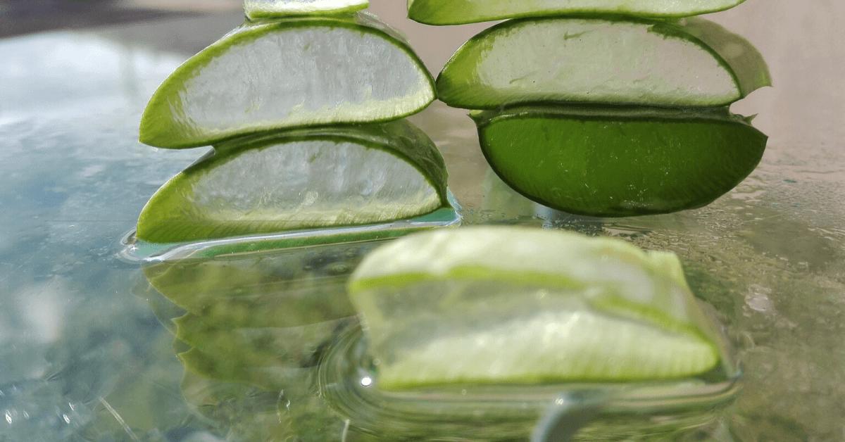 Propiedades de la sabila para la piel